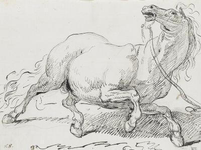 Album : cheval hennissant ; cheval cabré ; cheval allongé ; crâne de cheval-Jacques-Louis David-Giclee Print