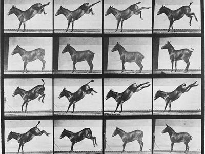 https://imgc.artprintimages.com/img/print/album-sur-la-decomposition-du-mouvement-animal-locomotion-1872-85-ruade-de-l-ane_u-l-pahhpl0.jpg?p=0
