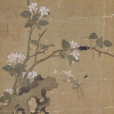 Album-Shian Xu-Giclee Print