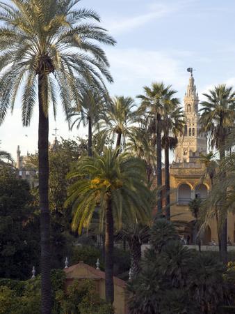 https://imgc.artprintimages.com/img/print/alcazar-palace-gardens-with-the-giralda-tower-in-background_u-l-peszdn0.jpg?p=0