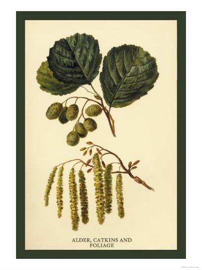 Alder, Catkins and Foliage-W^h^j^ Boot-Art Print