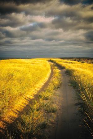Down the Road by Aledanda