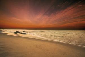 Marthas Vineyard Beach III by Aledanda
