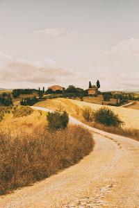 Strada Bianca II by Aledanda