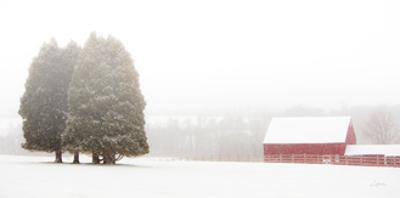 Winter Farm by Aledanda