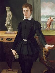 Portrait of a Young Man, Post 1560 by Alessandro Allori