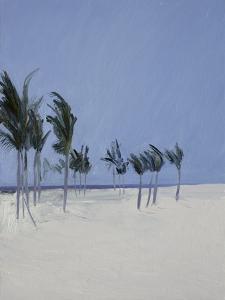 Cable Beach, 2008 by Alessandro Raho