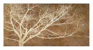 Dream Tree by Alessio Aprile