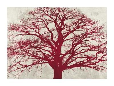 Purple Oak