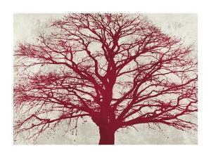 Purple Oak by Alessio Aprile