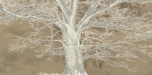 White Oak by Alessio Aprile