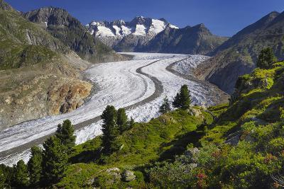 Aletsch Glaciers in Swiss Alps-Cornelia Doerr-Photographic Print