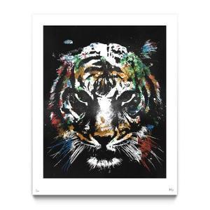 Eye of The Tiger (PKAN) by Alex Cherry