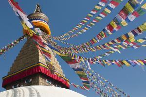 Bouddha (Boudhanath) (Bodnath) in Kathmandu is covered in colourful prayer flags, Kathmandu, Nepal by Alex Treadway