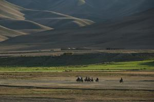 Donkeys are the Main Source of Transport in Rural Bamiyan Province, Afghanistan, Asia by Alex Treadway