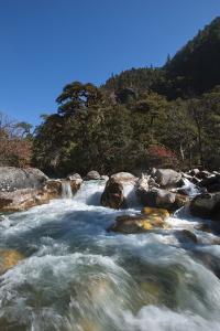 Fast flowing melt water near Thangthanka in Bhutan, Asia by Alex Treadway
