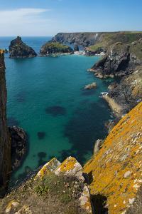 Kynance Cove on the Lizard Peninsula, Cornwall, England, United Kingdom, Europe by Alex Treadway