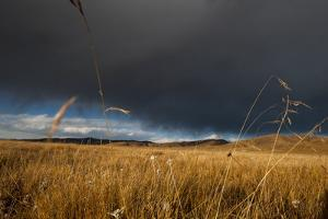 Stormy Sky over Rangelands on the Edge of the Tibetan Plateau in Sichuan Province, China, Asia by Alex Treadway