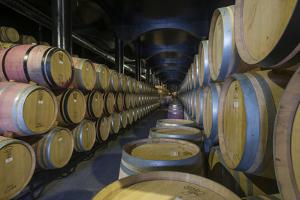 Wine Ageing in Oak Barrels in a Cellar at a Winery in the Alto Douro Region of Portugal, Europe by Alex Treadway