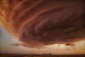The Pink Storm by Alexander Fisher