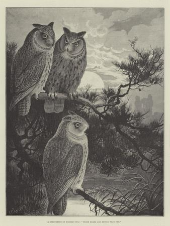 A Conference of Horned Owls, Three Heads are Better Than One