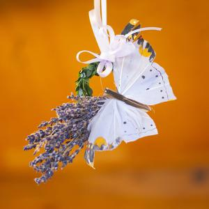 Butterfly with lavender as a jewellery by Alexander Georgiadis