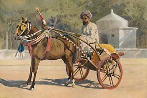 'A Benares Ekka', c1880 (1905) by Alexander Henry Hallam Murray