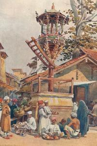 'A Feeding-Place for Birds, Ahmedabad', c1880 (1905) by Alexander Henry Hallam Murray