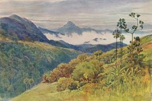 'Morning Mists in the Valley of the Mahawelli Gangha', c1880 (1905) by Alexander Henry Hallam Murray