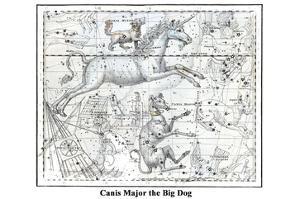 Canis Major the Big Dog by Alexander Jamieson