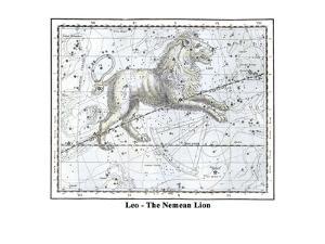 Leo - the Nemean Lion by Alexander Jamieson