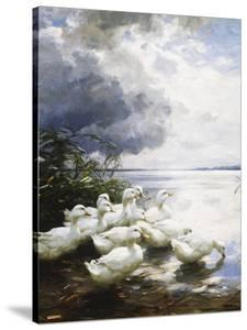 Ducks at the Lake's Edge by Alexander Koester