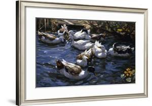 Ducks in the Reeds under the Boughs by Alexander Koester