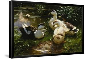 Ducks on a Pond with Waterlilies by Alexander Koester