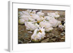 Ducks on a Pond by Alexander Koester