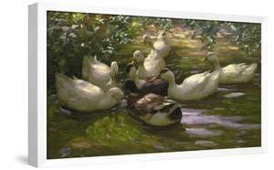 Ducks under Birch Twigs by Alexander Koester