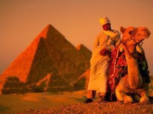 Camel and Driver Resting near the Great Pyramids, Egypt by Alexander Nesbitt