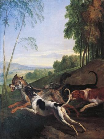 Wolf Hunting, Painting by Alexandre-Francois Desportes (1661-1743), France, 17th Century