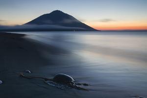 Fuji Etorofu by Alexey Kharitonov