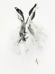 Mr. Rabbit by Alexis Marcou