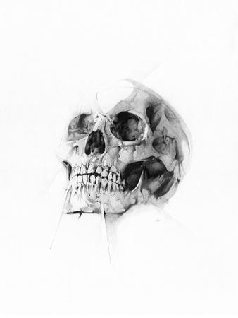 Skull 52