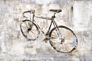 Bicycle Lost And Found by Alexys Henry