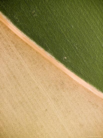 Alfalfa Crop with Pivot Irrigation, Zambia-Michael Fay-Photographic Print