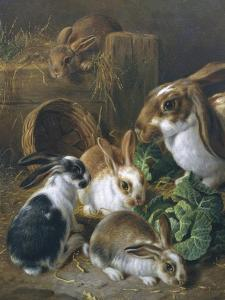 Feeding Time by Alfred Barber