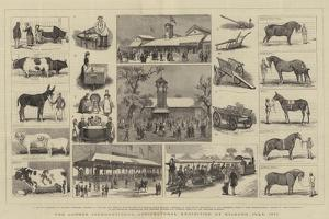 The London International Agricultural Exhibition at Kilburn, July 1879 by Alfred Chantrey Corbould