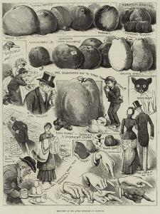 Sketches at the Apple Congress at Chiswick by Alfred Courbould