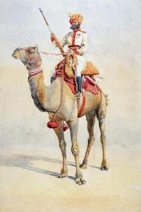Sowar of the Bikanir Camel Corps, Illustration for 'Armies of India' by Major G.F. MacMunn,… by Alfred Crowdy Lovett