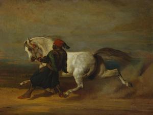 The Pasha's Pride by Alfred De Dreux