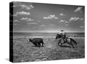 Biffin Ranch by Alfred Eisenstaedt