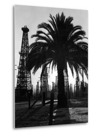 Billowing Palm Tree Gracing the Stark Structures of Towering Oil Rigs